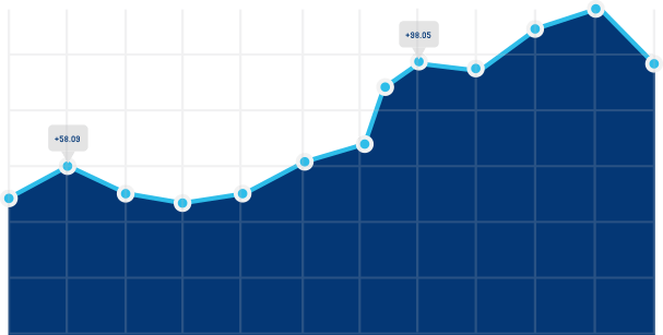 Search Engine Optimization Growth